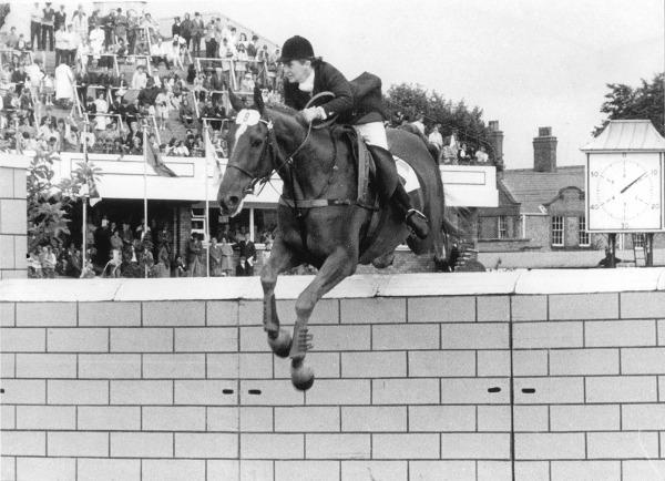 RDS_horseshow_Iris and Morning Light_1969.tif