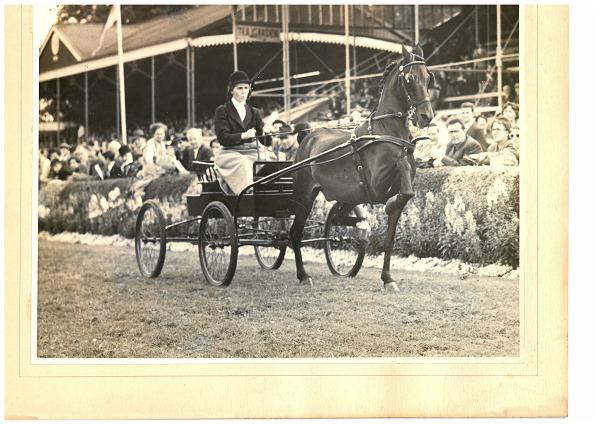 RDS_horseshow_Iris Kellett_1960.tif