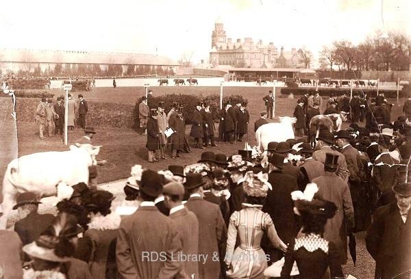 RDS_spring show_1899_photo.jpg