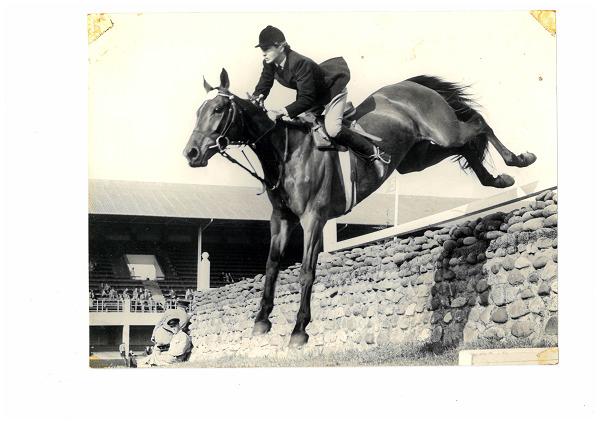 RDS_horseshow_Iris Kellett_Short Lessons_1956.tif