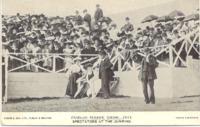 RDS_horseshow_postcard_1904.tif