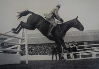 RDS_horseshow_Lieut Bizard on Petain_1926.jpg