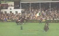 RDS_horseshow_postcard_1979.jpg