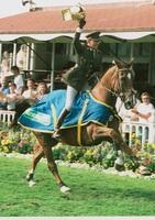 RDS_horseshow_John Ledingham_1995.jpg