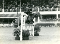 RDS_horseshow_Iris Kellett European Championships_1969.tif