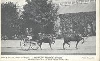 RDS_horseshow_postcard_1910(2).jpg